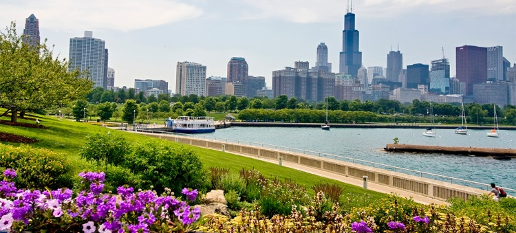 Chicago landscape